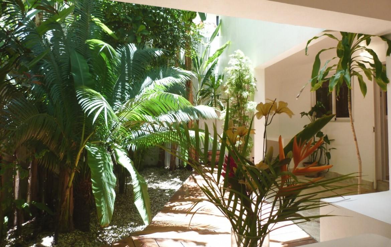 Apartment in Cabarete