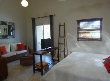 Ocean Front studio for 2, Cabarete 30