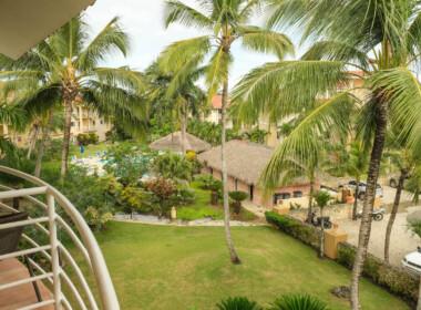 Tropical Studio Ocean Dream New17
